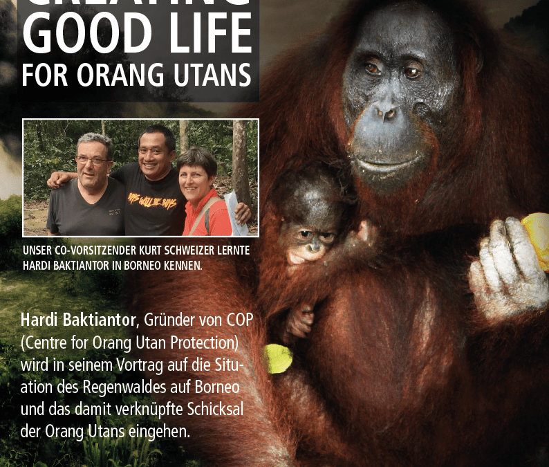 "Günzburger Zeitung zu ""Creating a good life for Orang-Utans"""